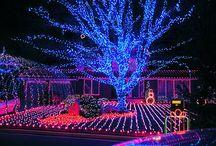 HOLIDAY - CHRISTMAS LIGHTS