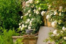 Romantisk trädgård