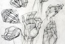 draw - study