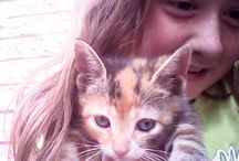 Me and my kittens;) / My kitties!
