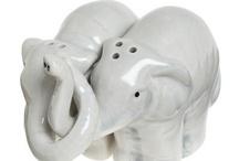Elephant Expression.