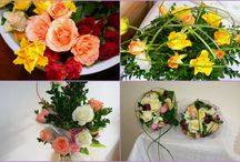 Floristické kurzy Violet Hradec Králové / Vítáme Vás na nástěnce květinových kurzů floristiky Violet v Hradci Králové. Kurzy floristiky jsou určeny pro všechny, kteří chtějí dělat radost sobě i svým blízkým vlastnoručně vytvořenými kyticemi. Odreagujete se od běžného shonu a stresu a pod dohledem naší milé a zkušené floristky se naučíte něčemu novému, co příjemně obohatí Váš život o nové zážitky. Naše lektorka Vás povede krok za krokem po celou dobu kurzu, zodpoví Vaše dotazy a poskytne Vám potřebné rady a informace.