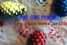 Pine Cones Craft