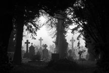 Haunted / by Heather