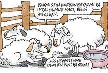 kurban bayrami