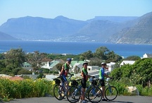Riding - Cape Peninsula / Cape Town is a paradise for runners, hikers and bikers (both the motorised and the manual varieties). Cape Town and the region has many Cape Town horse trails so take time out to experience a horseback riding adventure on the beach or mountain path.