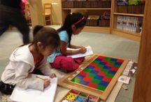 Montessori middenbouw