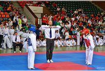 Cupa Vrancea Taekwondo – ediţia a IV-a / Astăzi, sâmbătă, 30 mai 2015, are loc cea de-a patra ediţie a Cupei Vrancea la Taekwondo (categorii: copii, cadeţi, juniori şi seniori). Evenimentul sportiv se desfăşoară la Sala Polivalentă din Focşani.