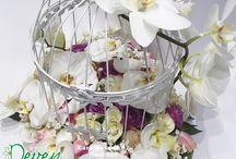 Cvetni aranžmani / Cvetni aranžmani za sve prilike