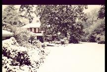 LET IT SNOW  / by Kristy Johnson