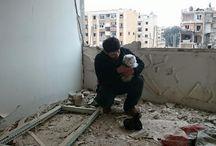 Mohammad Alaa - Il gattaro d'Aleppo - Syria