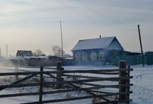winter / winter, nature