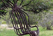 Tree Art / Beautifully sculpted living plant art, such as pooktre, aborsculpture and tree shaping.