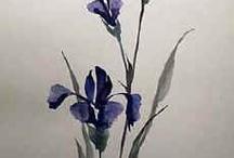Lirios azules & blue iris / by Susana Smulevici