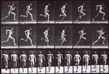 animacja - ruch