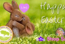 Easter sale offered by Nutritional Institute