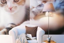 Animals / wall stickers/ animals