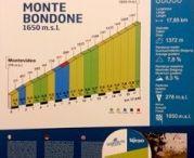 """Progetti di Accademia / Avviato il progetto """"Grandi salite del Trentino"""" ideato da Accademia della Montagna e condiviso con il Servizio viabilità della Provincia e Trentino Marketing per far conoscere le montagne Trentine utilizzando la bicicletta."""