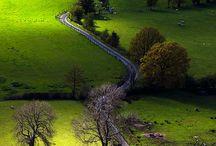 The Long .. Long  Road .............!