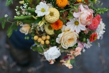 Autumn weddings / by Toni Chandler Flowers & Events