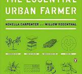 agriculture urbaine / urban farming