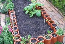 Trädgård o odling