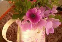 My flowers!!!!!!!!!! / FLOWERS!
