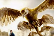 Fantastic Beasts and Where to Find Them / looking forward everything  need to know everything