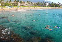Hawaii / by Ashley Haikkila