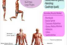 PT / Personal Training resources / by Eli King Fitness