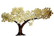 Drzewo obfitości