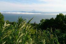 Kamchatka / Kamchatka. Life