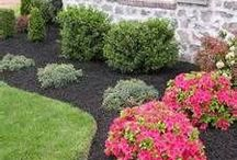 House - Landscaping Inspiration / Landscaping ideas inspired byTuscany
