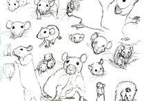 rat stuff