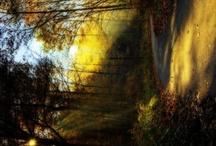 Light up my world. / by Mona Sinha