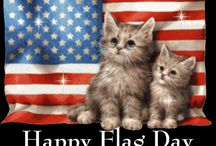 June -- beginning summer pleasures & holidays / Traditional for weddings, June is also start of summer vacation from school. Celebrate Flag Day, Father's Day, Summer Solstice, Old Maid's Day (on the 4th), and don't forget that June is Adopt-a-Cat Month!
