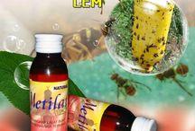 Metilat Lem / Gunakan Pupuk Nasa Metilat Lem  untuk perangkap lalat buah dan serangga terbang, Hubungi Firdaus 085693123544-7EDEC30A.