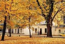 Arrowtown, New Zealand / Picture-perfect Arrowtown is a living museum, and the beautifully preserved historical buildings combined with the deciduous trees in autumn are a breathtaking display. For accommodation and activities in Arrowtown and the Otago region, go to aatravel.co.nz
