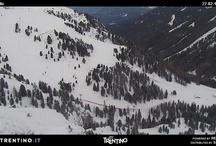Webcam images