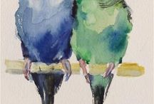 Perroquets aqu