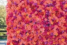 Flower walls/letters