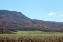 Shenandoah's Scenic Views