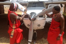 Exclusively Guided Aerial Safaris