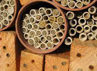 domek pro hmyz