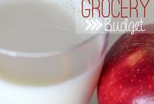 Frugality/Budgeting / 0 / by Budget Bytes | Delicious Recipes for Small Budgets