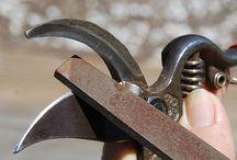 Sharpen shears