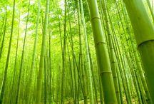 Bamboo Silk rugs / Made from Bamboo