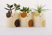 Pottery Plants Cute