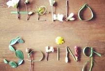 Seasonal Moments - Spring