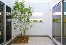 庭_Garden